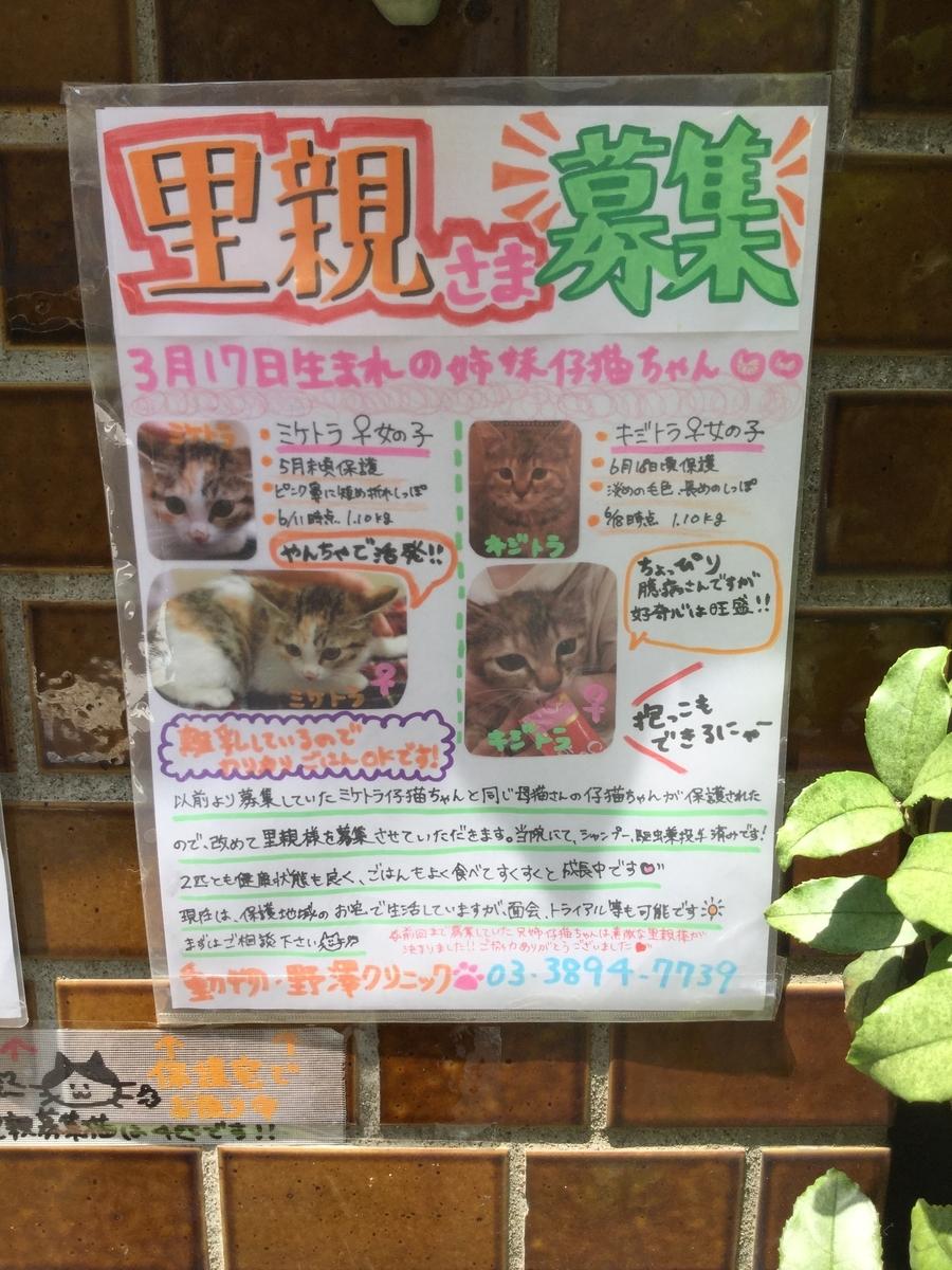 f:id:nozawa_clinic:20190702184246j:plain