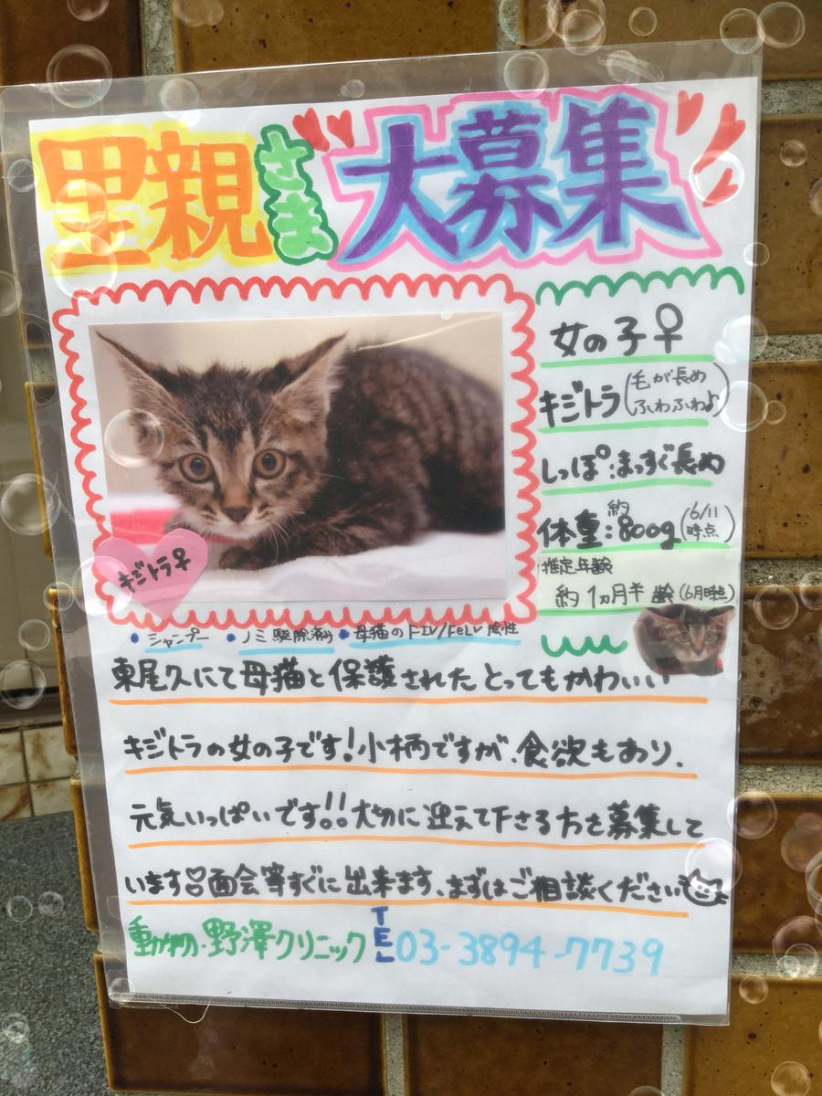 f:id:nozawa_clinic:20190703120424j:plain