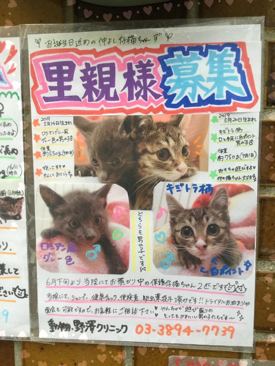 f:id:nozawa_clinic:20190703165657j:plain
