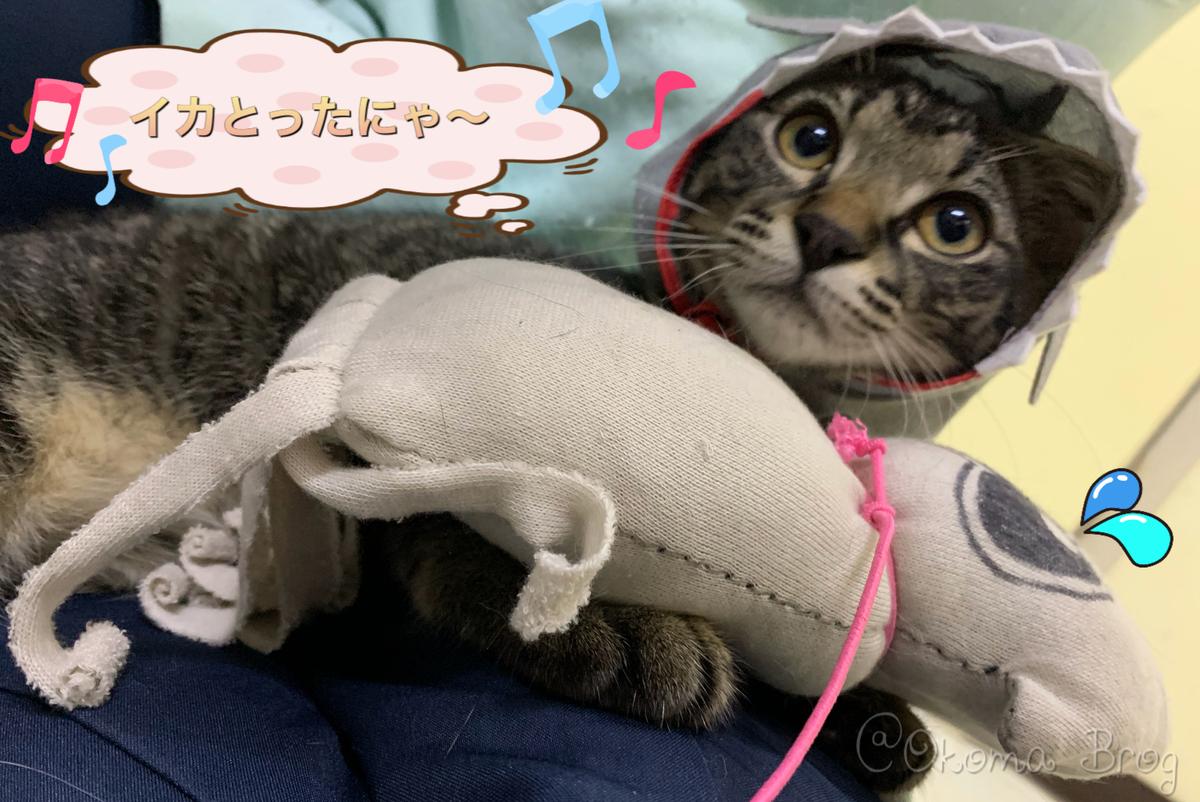f:id:nozawa_clinic:20190730172757j:plain