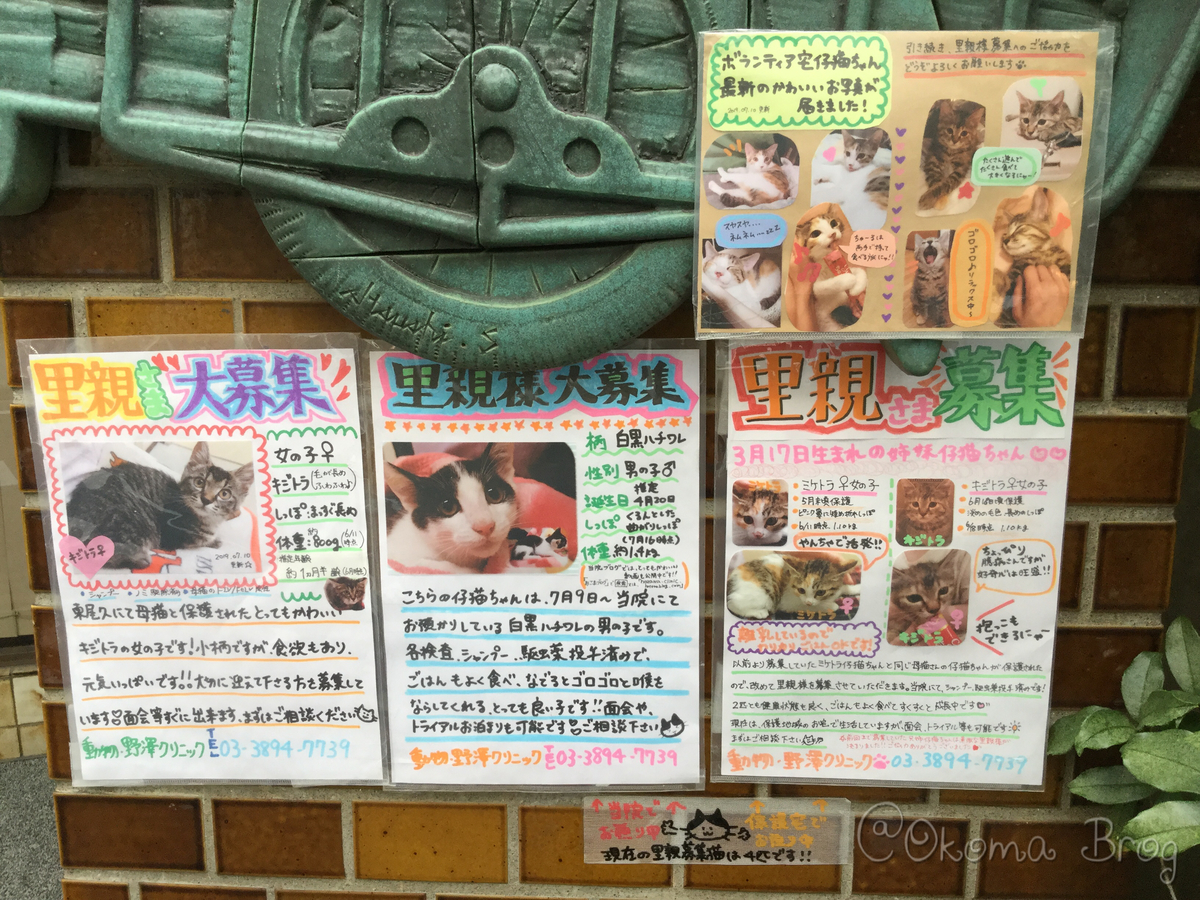f:id:nozawa_clinic:20190730173854j:plain