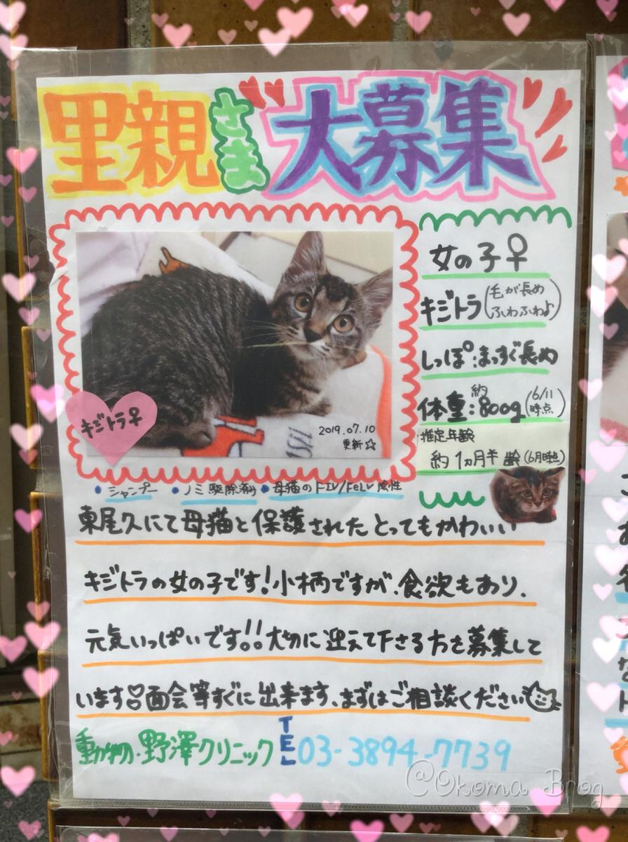 f:id:nozawa_clinic:20190731163746j:plain