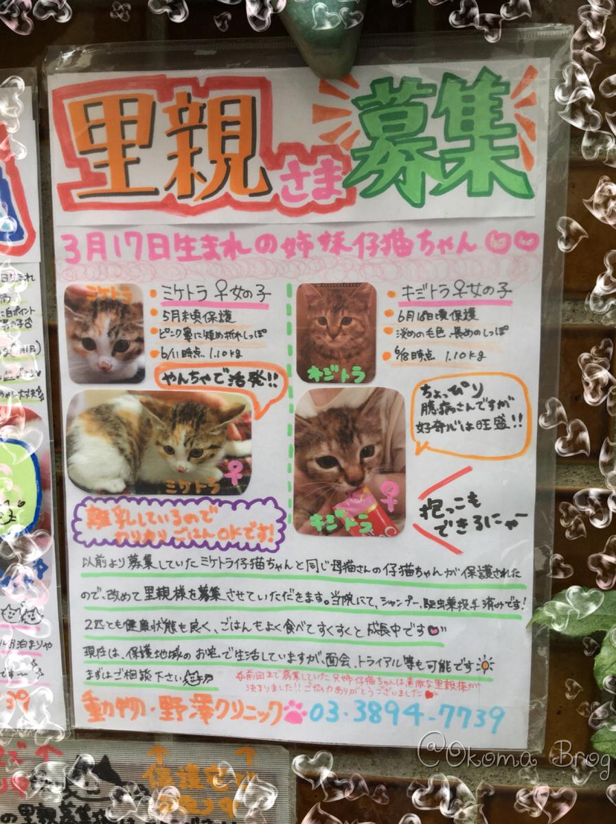 f:id:nozawa_clinic:20190731164031j:plain