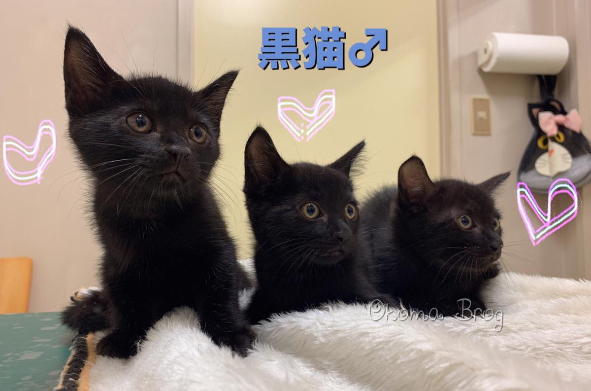 f:id:nozawa_clinic:20190829171213j:plain
