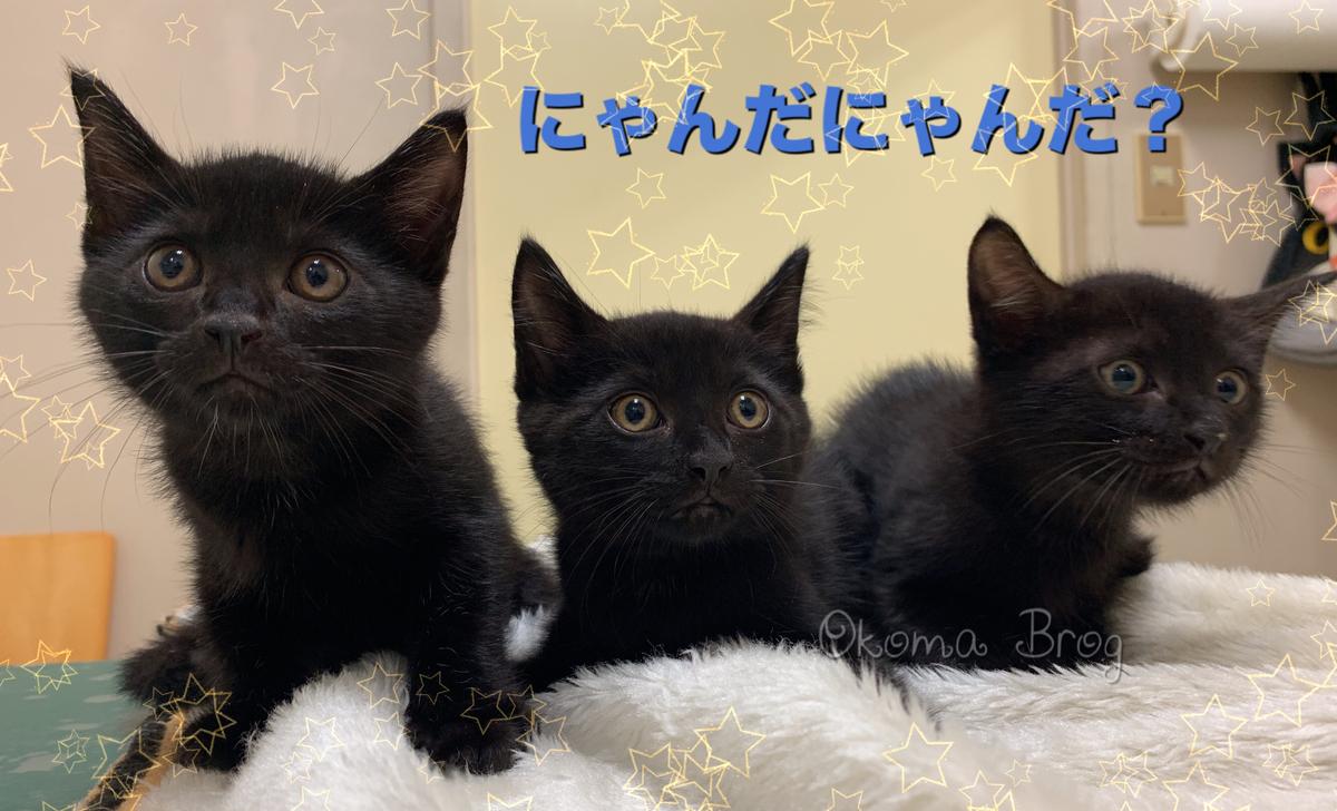 f:id:nozawa_clinic:20190829171238j:plain