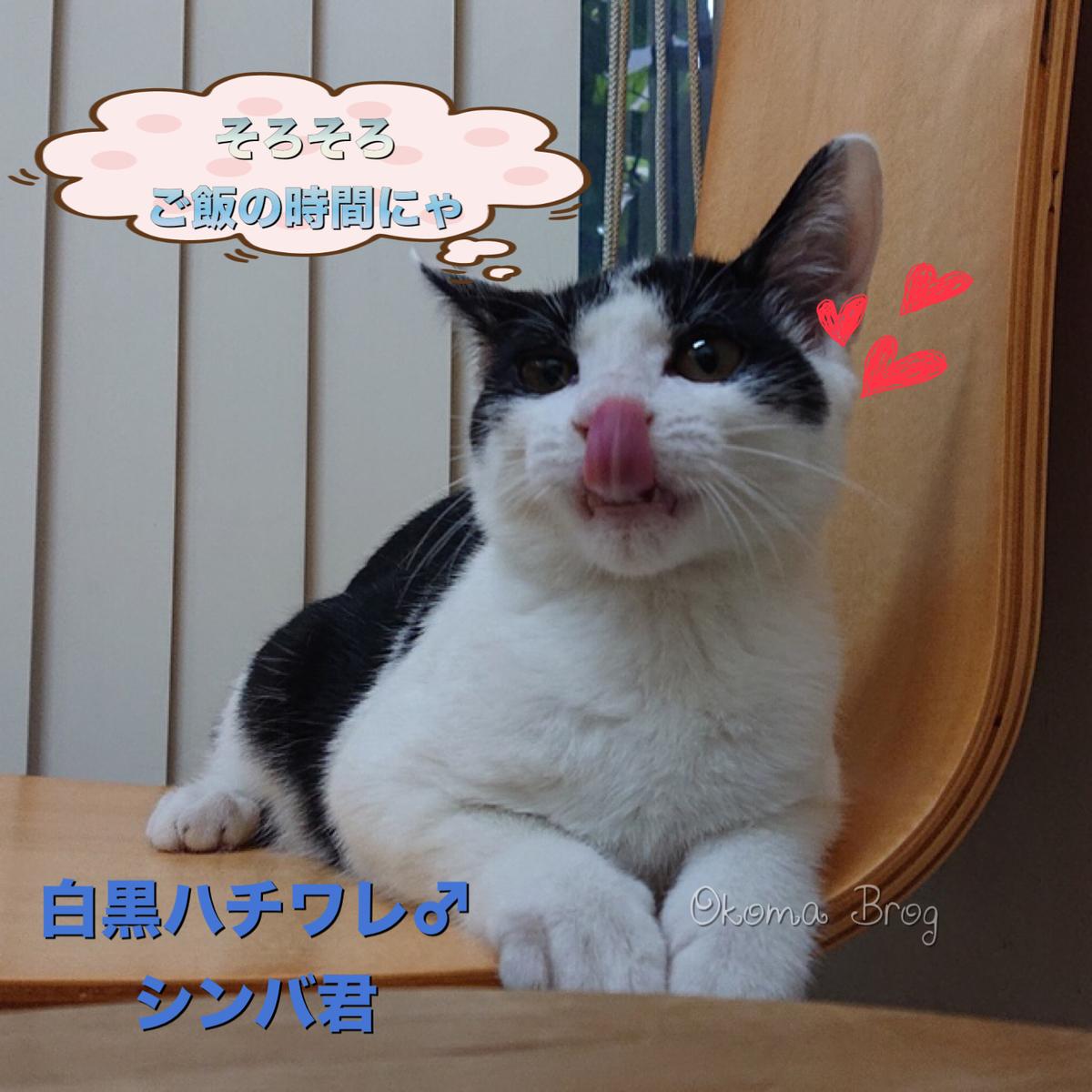 f:id:nozawa_clinic:20190829173432j:plain