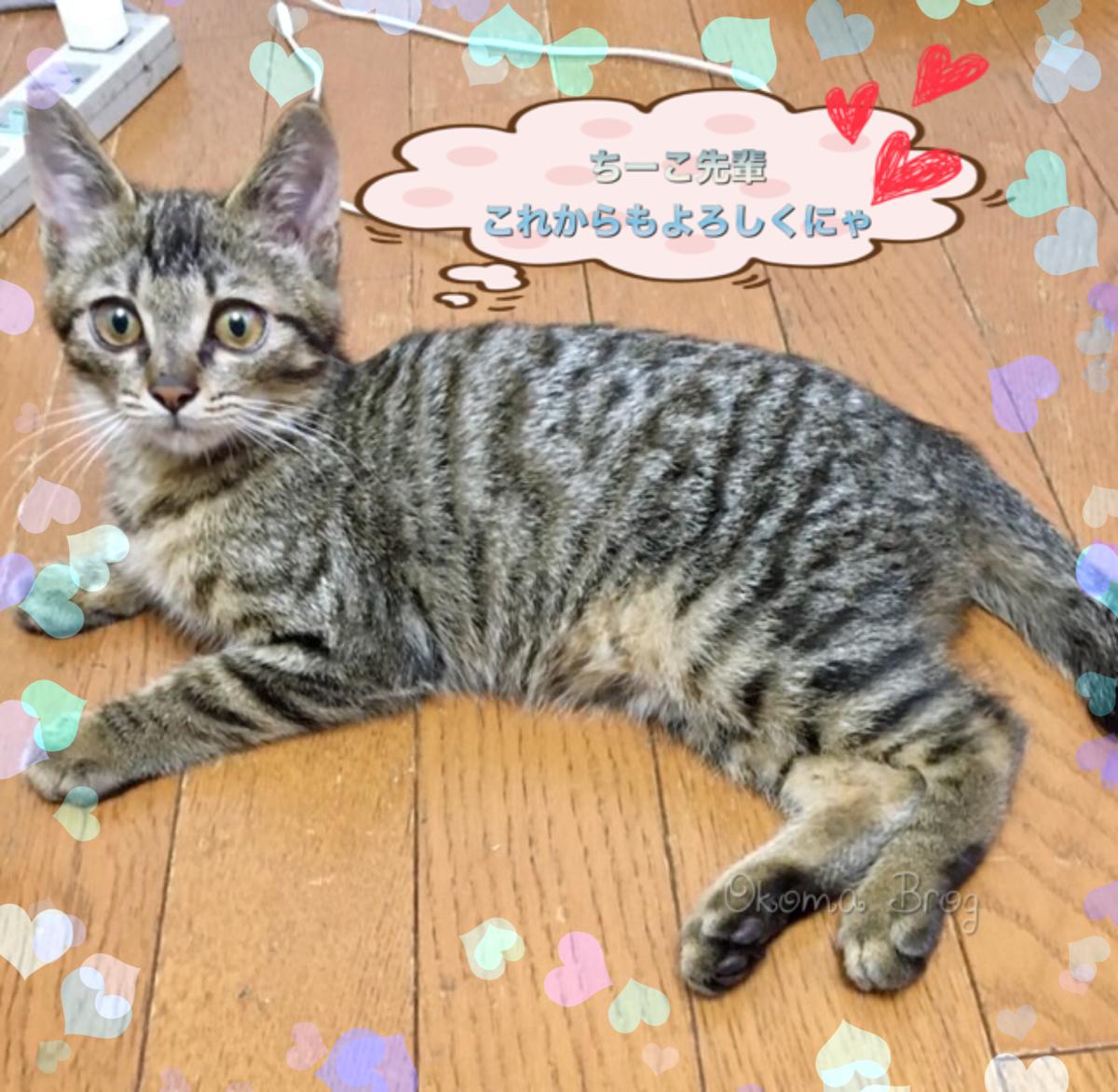 f:id:nozawa_clinic:20190927160656j:plain