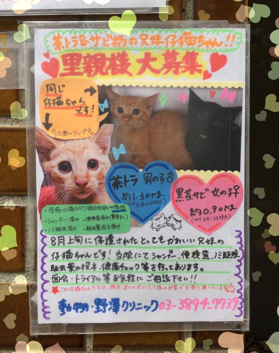 f:id:nozawa_clinic:20190927162432j:plain