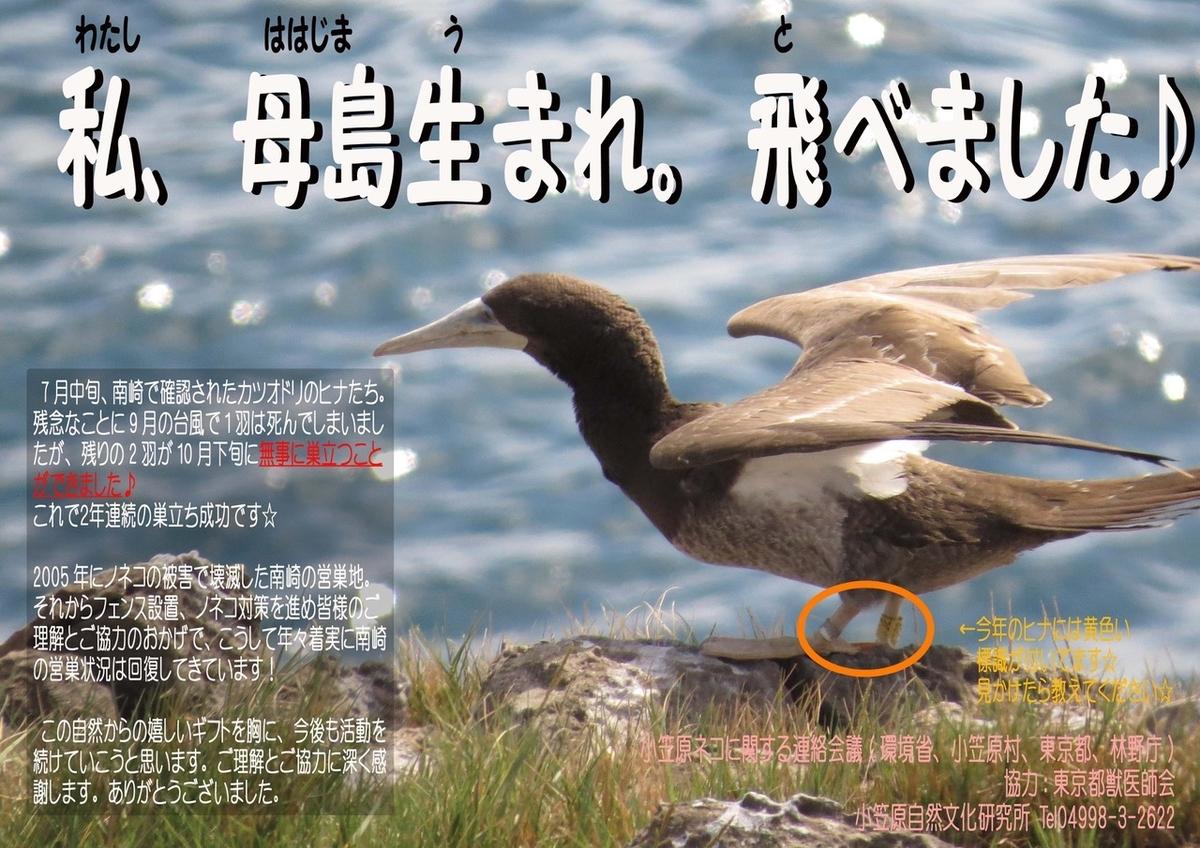 f:id:nozawa_clinic:20191003180451j:plain