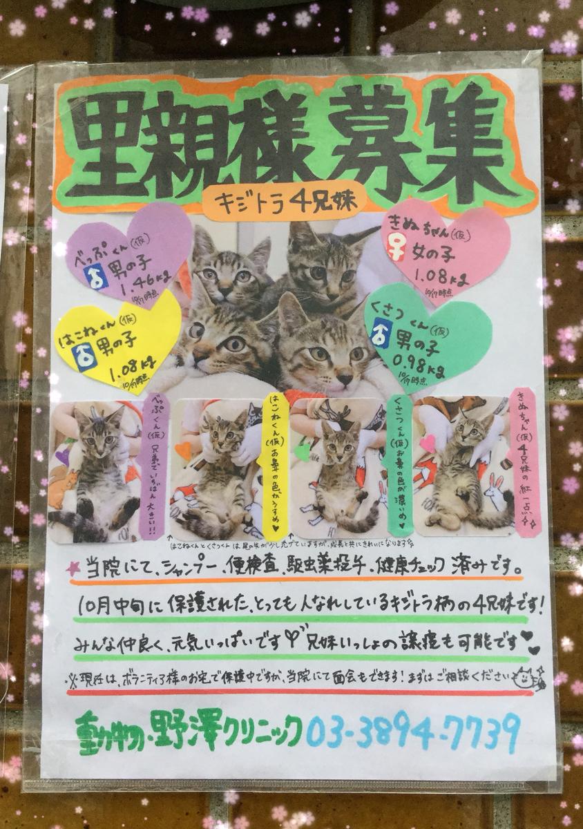 f:id:nozawa_clinic:20191018174515j:plain