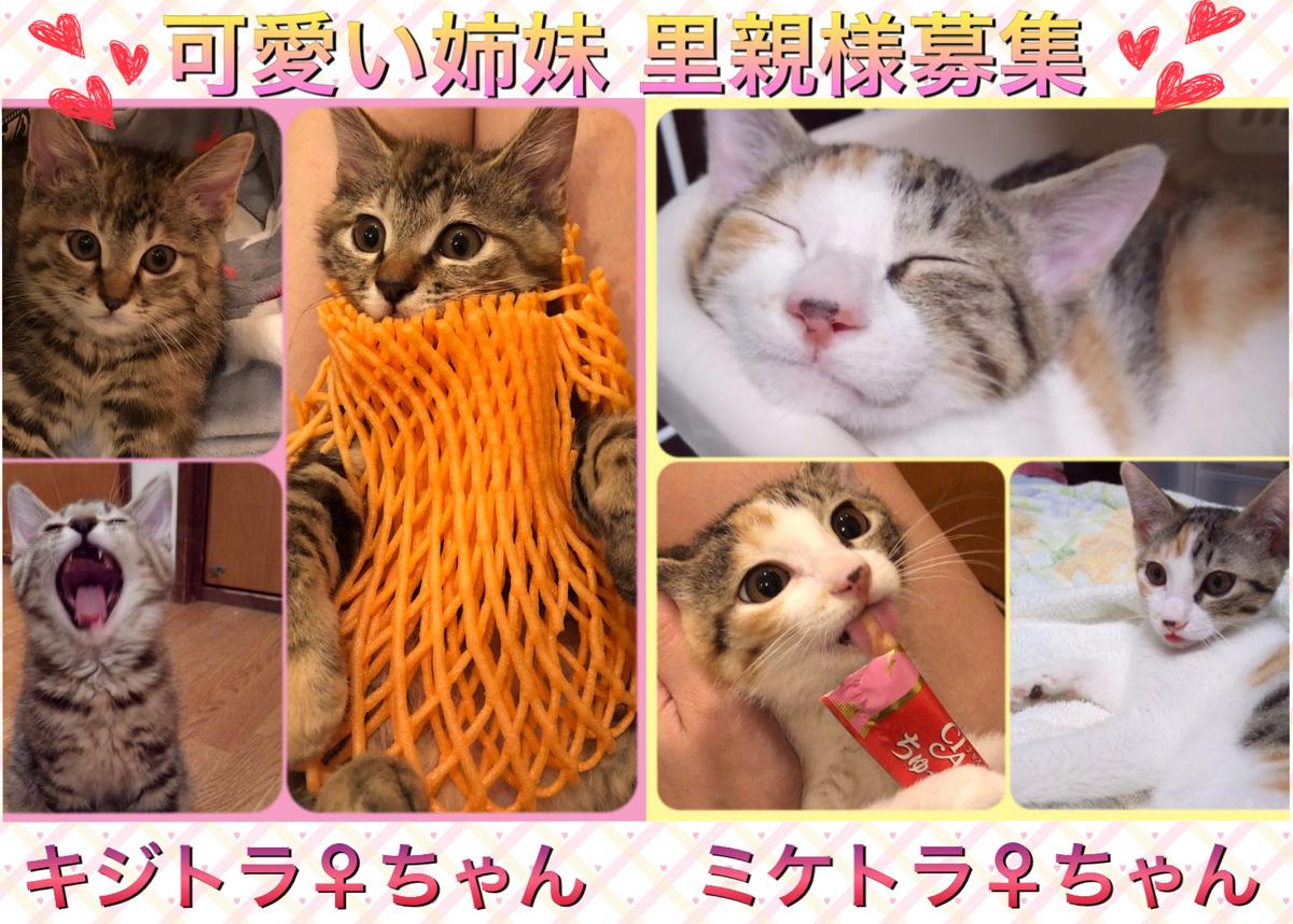 f:id:nozawa_clinic:20191018175031j:plain