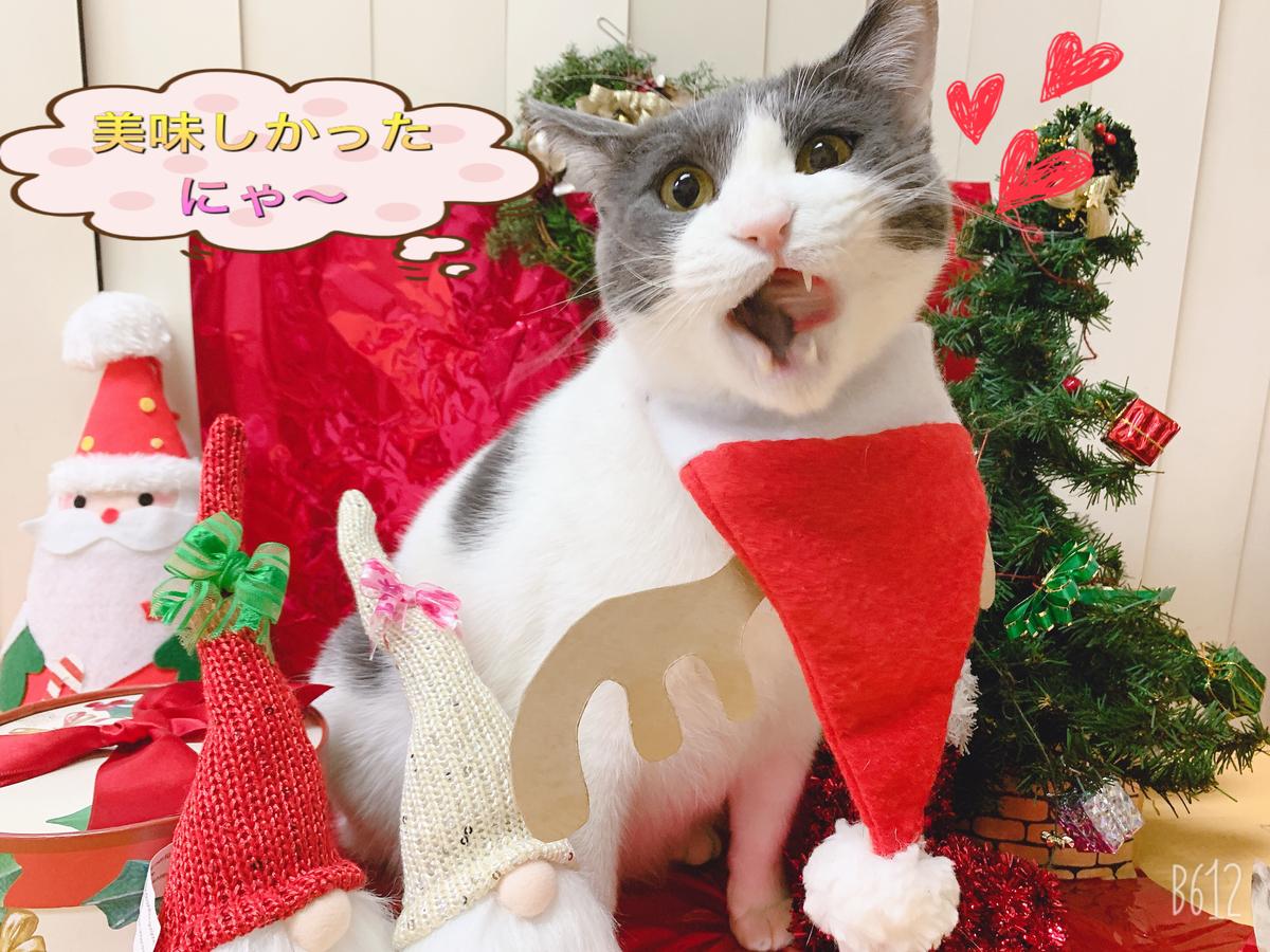 f:id:nozawa_clinic:20191225175526j:plain