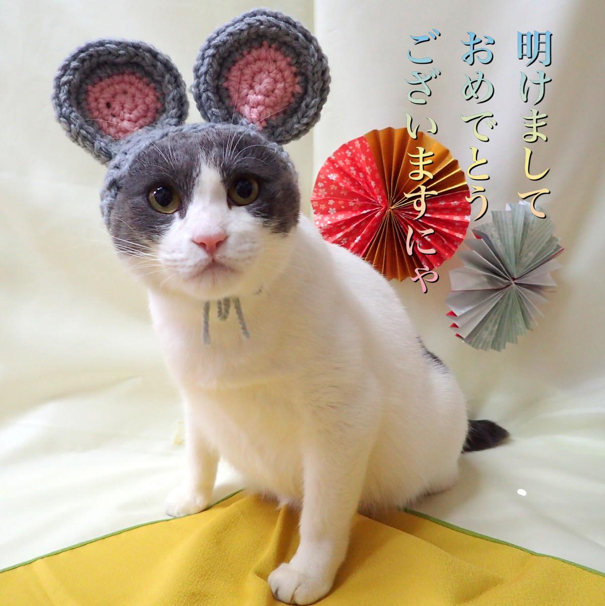 f:id:nozawa_clinic:20200114170847j:plain