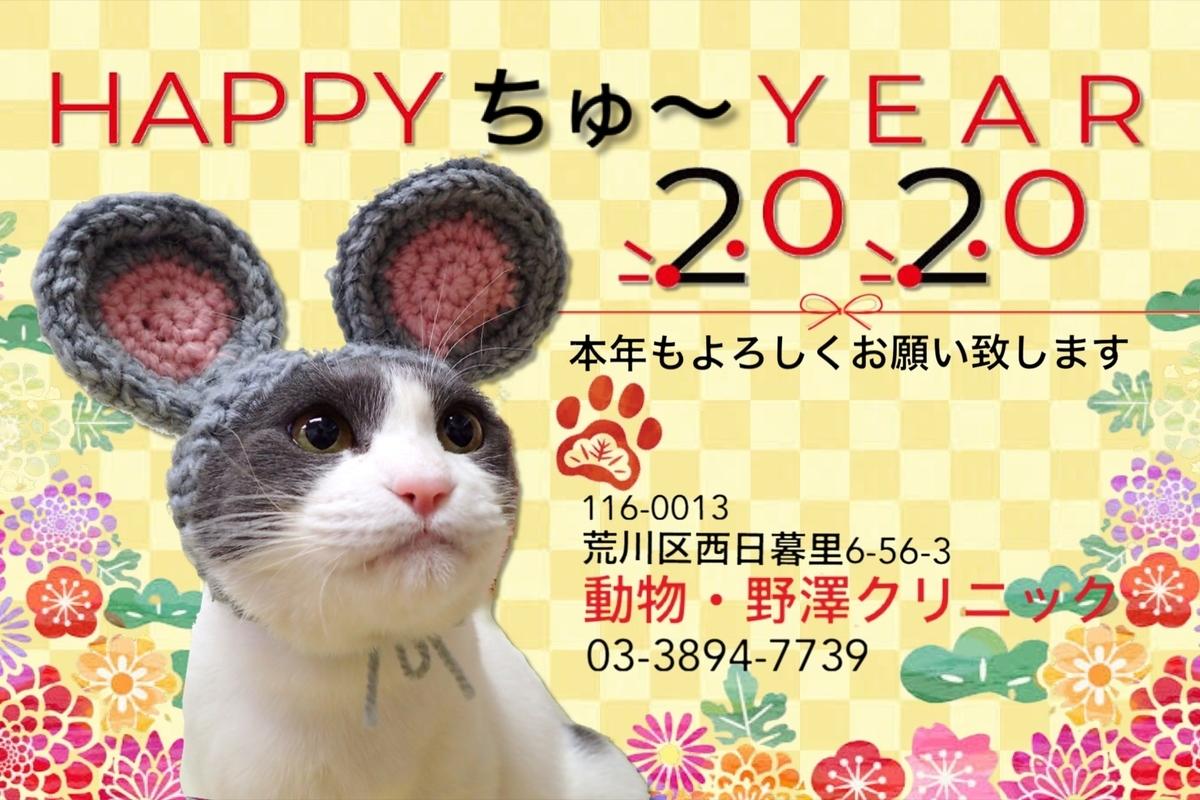 f:id:nozawa_clinic:20200114171108j:plain