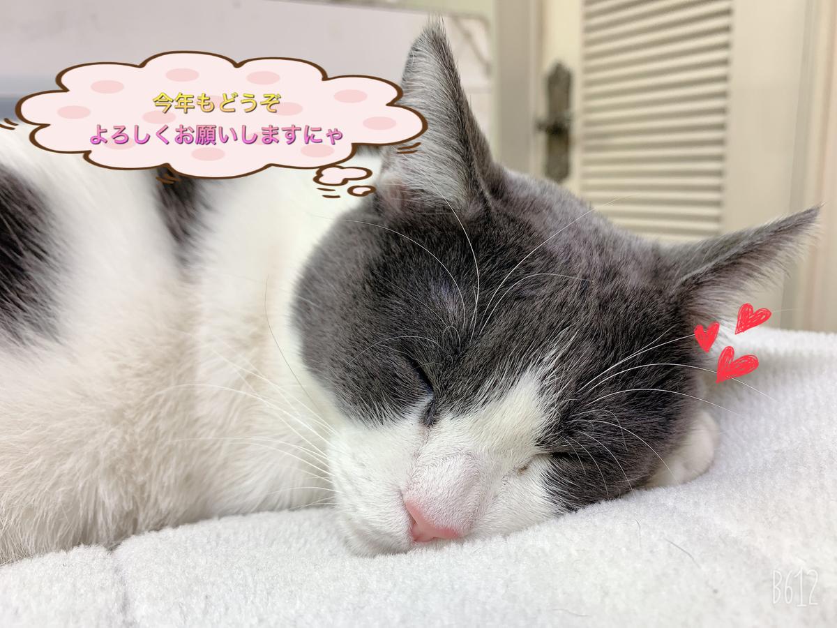 f:id:nozawa_clinic:20200116155634j:plain