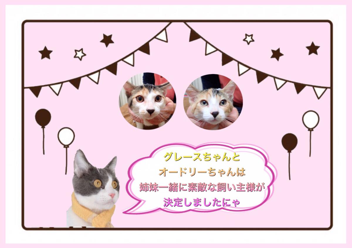 f:id:nozawa_clinic:20200212155431j:plain