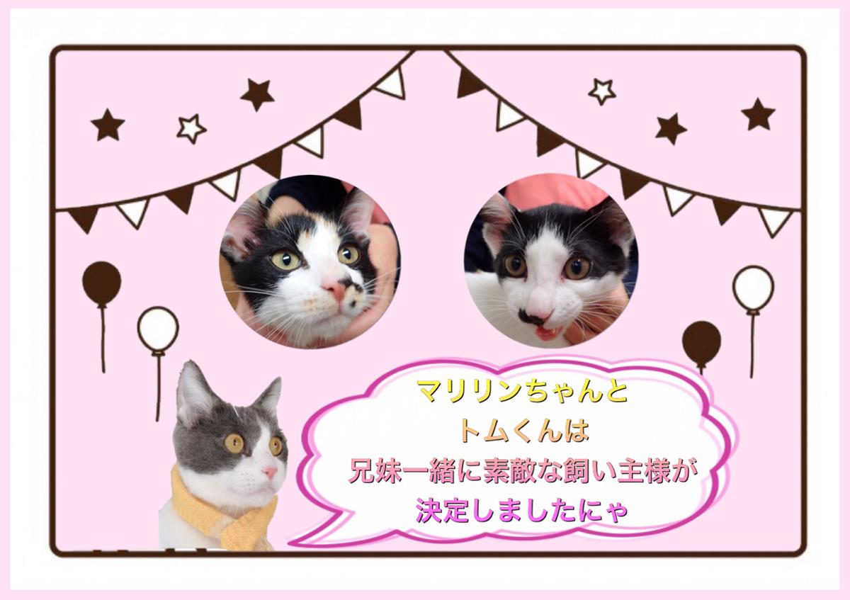 f:id:nozawa_clinic:20200212165322j:plain