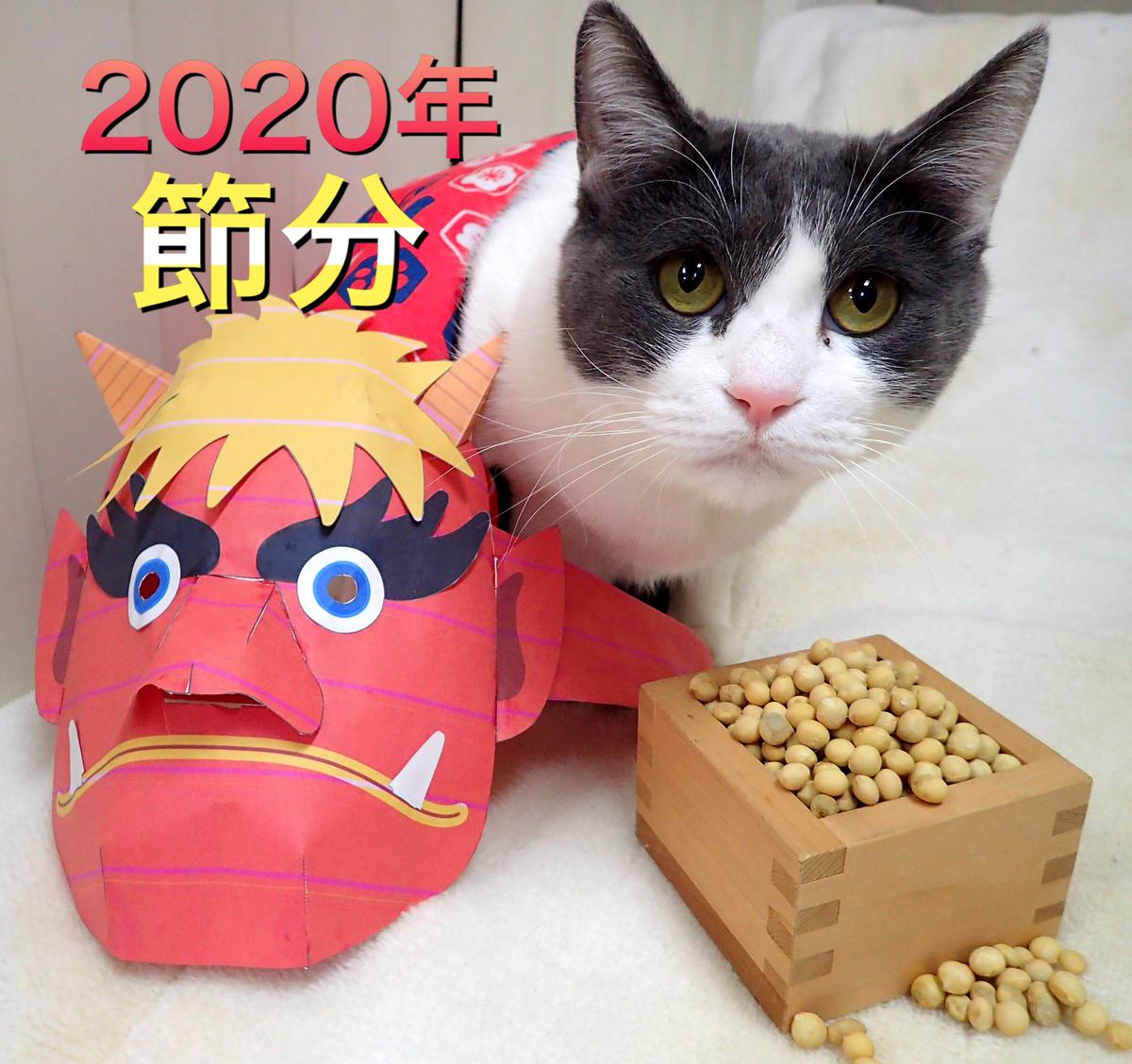 f:id:nozawa_clinic:20200212170226j:plain