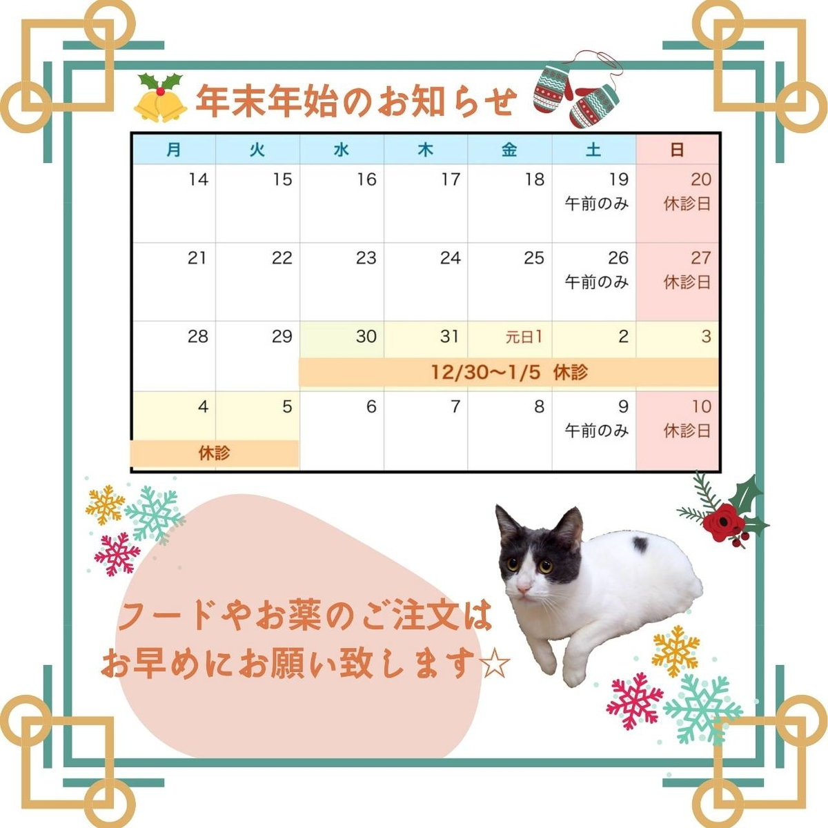 f:id:nozawa_clinic:20201130180641j:plain