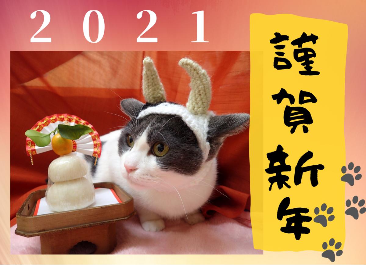f:id:nozawa_clinic:20210112171445p:plain