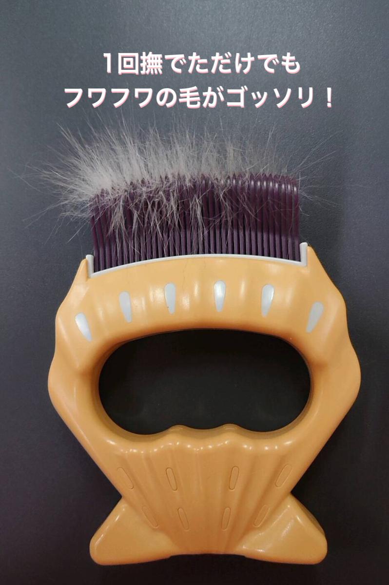 f:id:nozawa_clinic:20210415113559j:plain