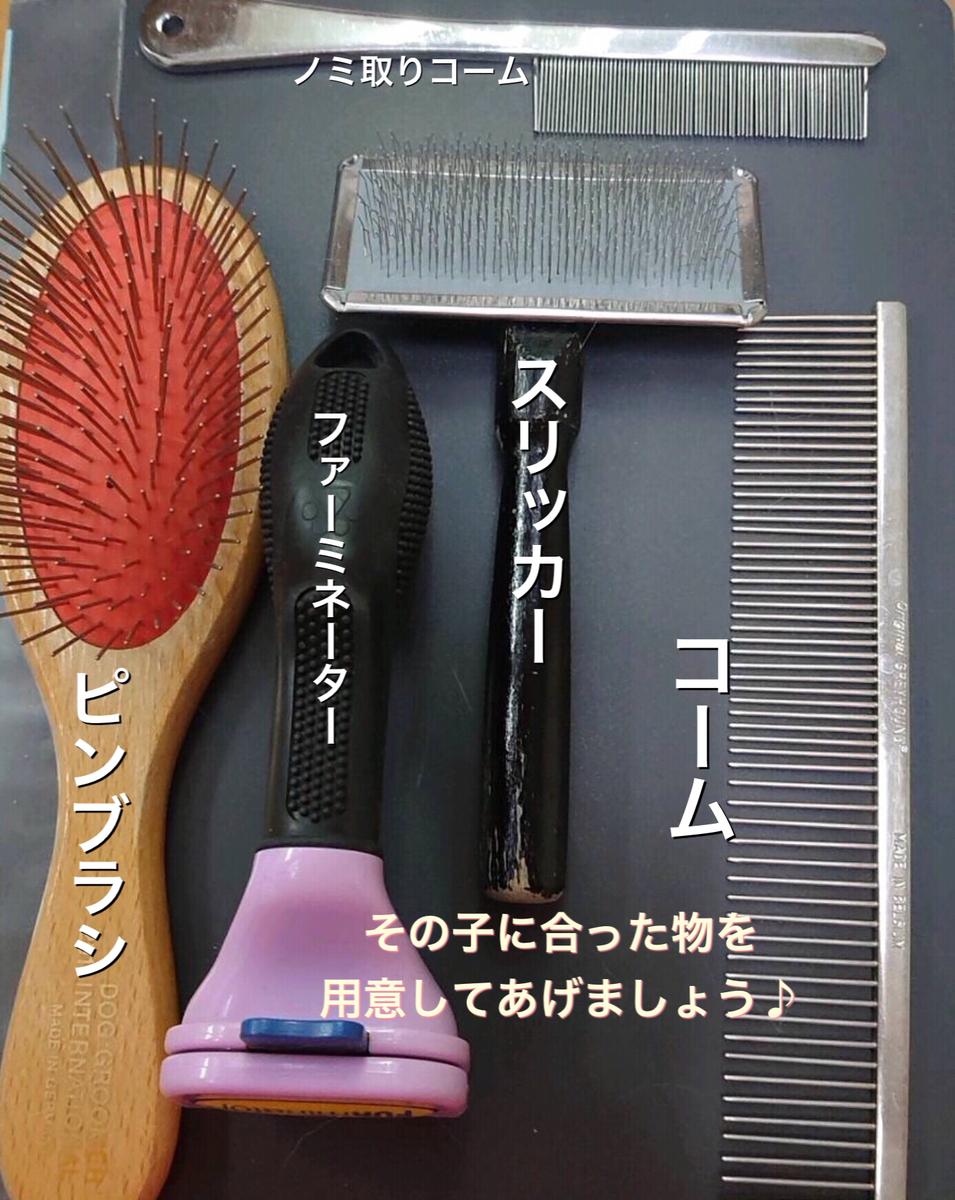 f:id:nozawa_clinic:20210415164144j:plain
