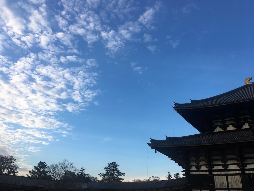 f:id:nozoka_k:20190125184248j:image