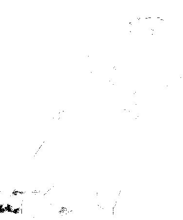 f:id:nr0206gd07:20170828214308p:plain