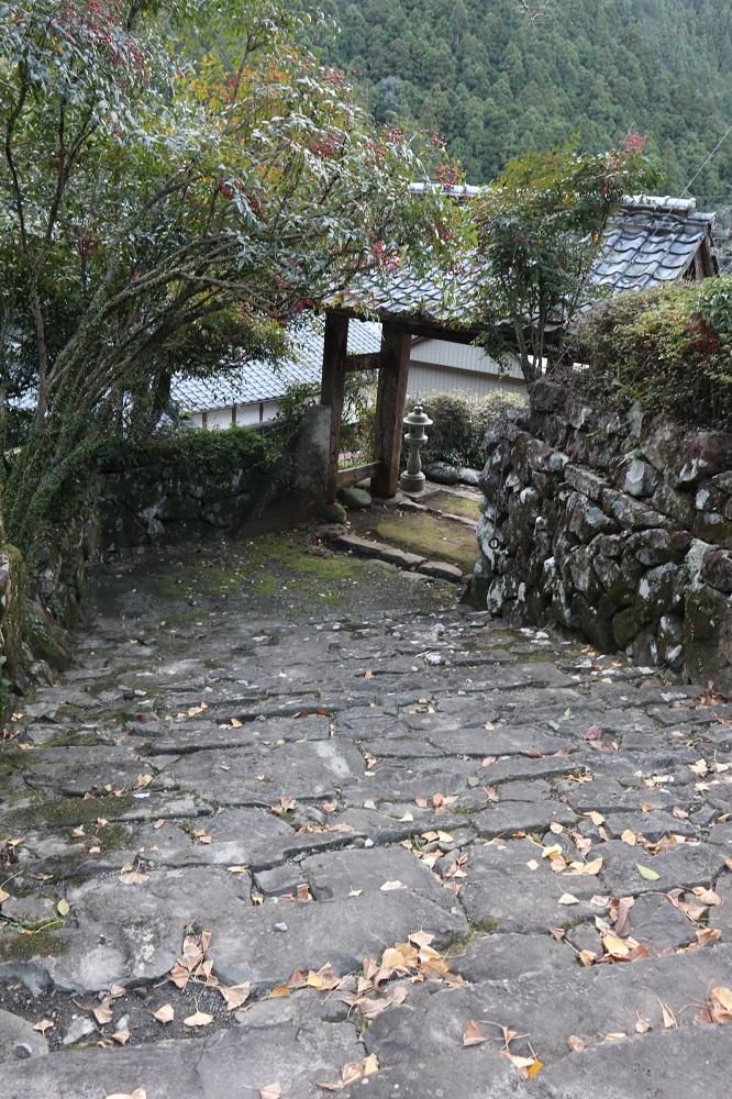 f:id:nshintaro:20181228223541j:plain