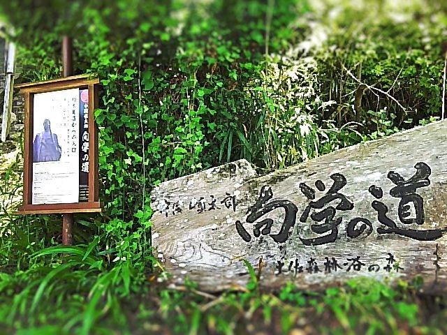 f:id:nshintaro:20190207183204j:plain