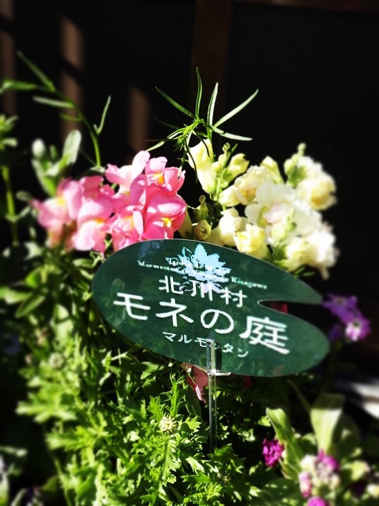 f:id:nshintaro:20190308175716j:plain
