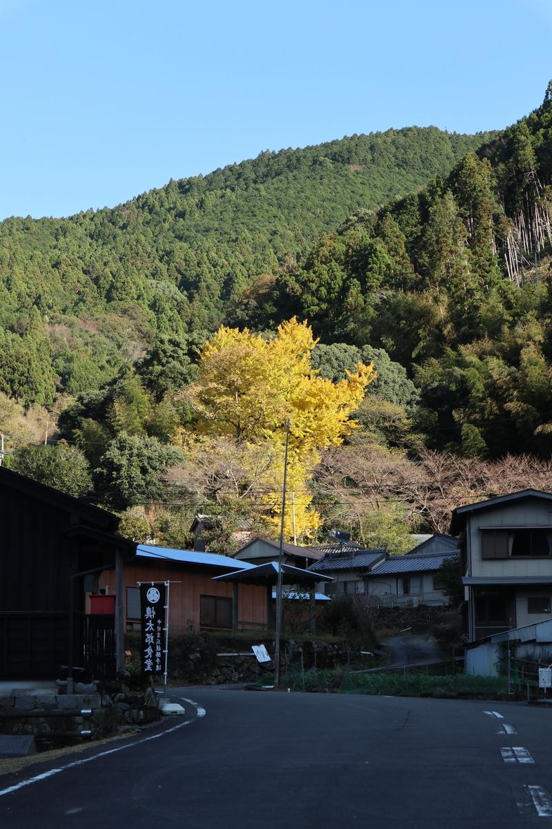 f:id:nshintaro:20191213200025j:plain