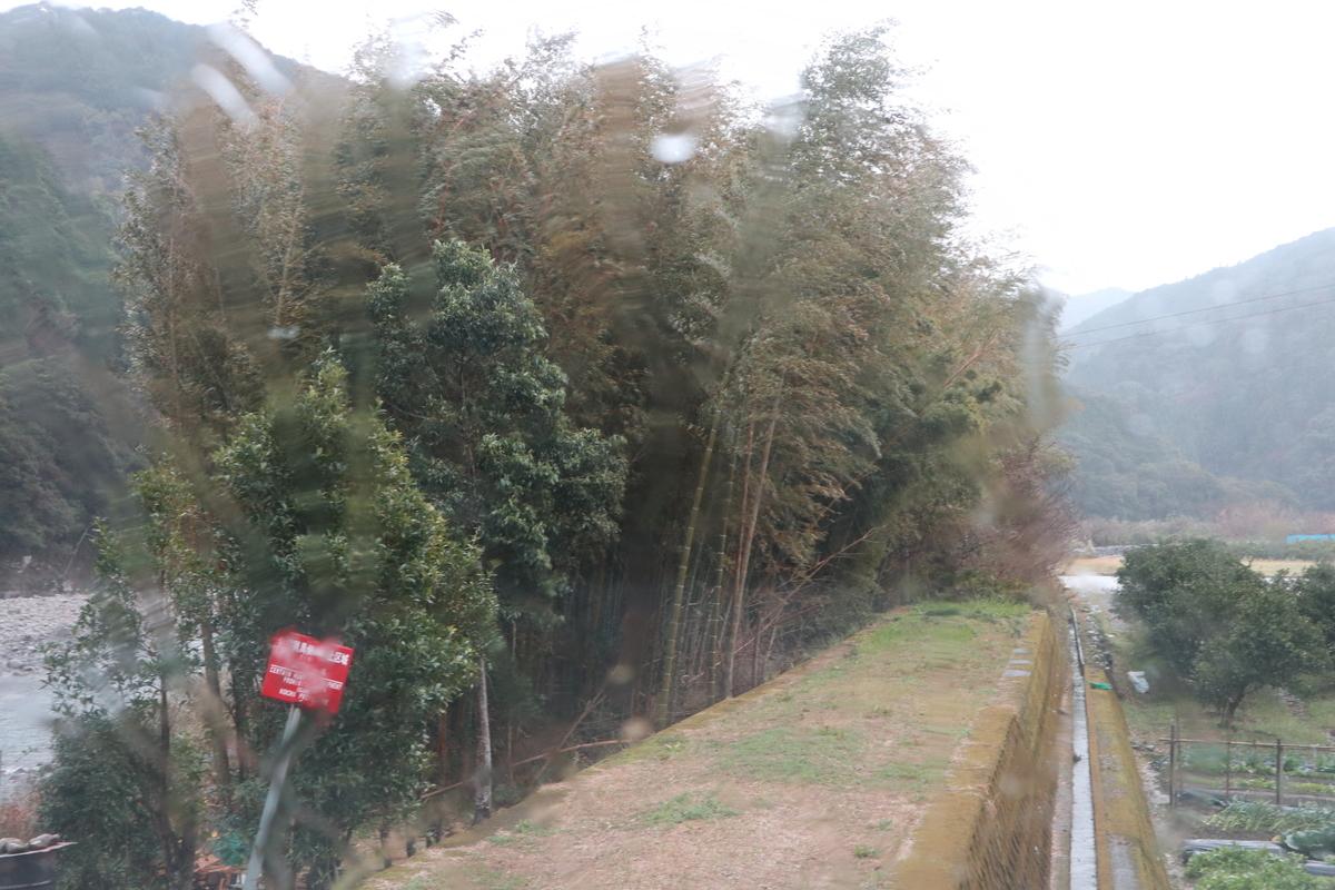 f:id:nshintaro:20200127192544j:plain