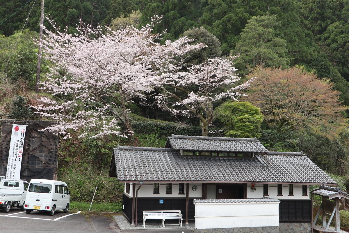 f:id:nshintaro:20200330181651j:plain
