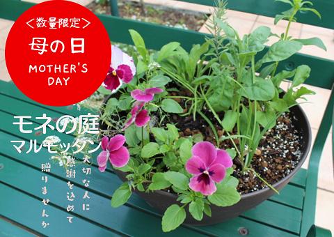 f:id:nshintaro:20200501202308p:plain