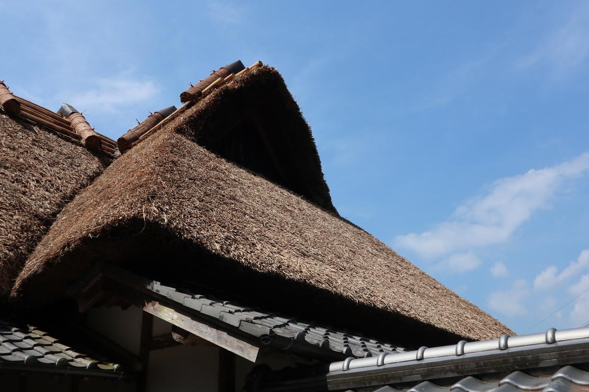 f:id:nshintaro:20200608172423j:plain