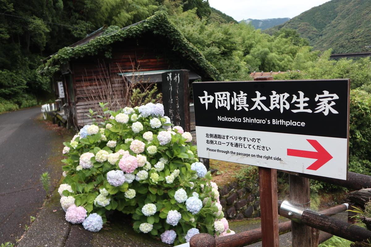 f:id:nshintaro:20200619191622j:plain
