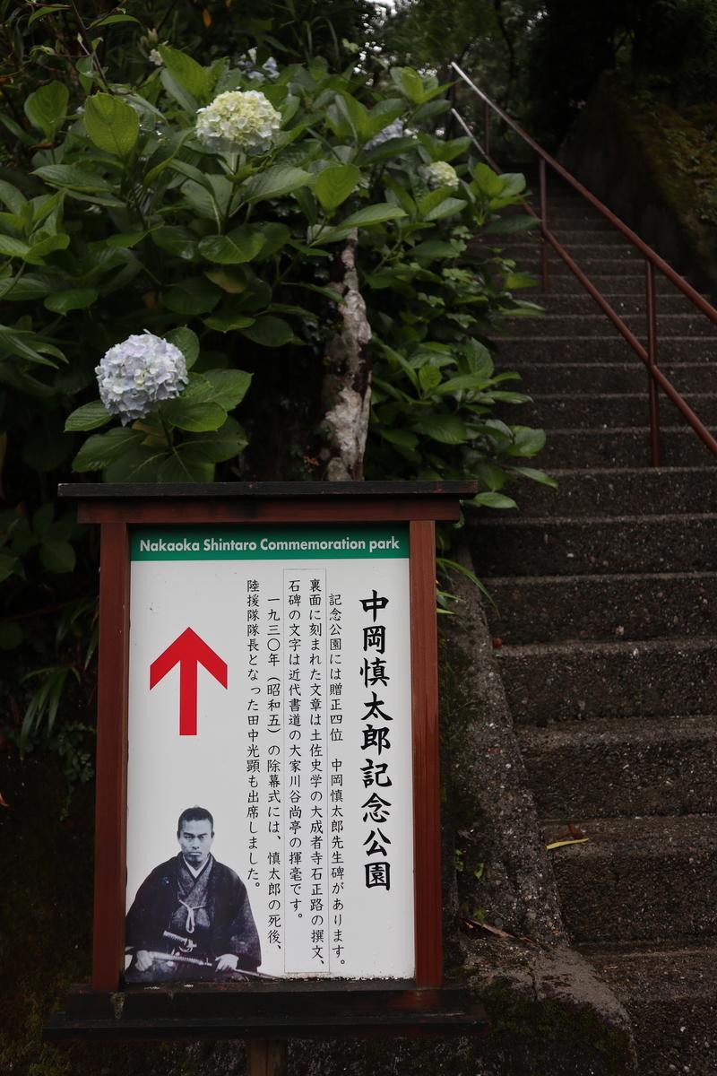 f:id:nshintaro:20200619191629j:plain