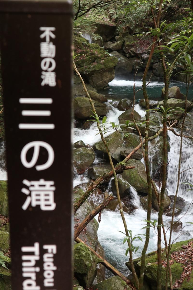 f:id:nshintaro:20200621204448j:plain