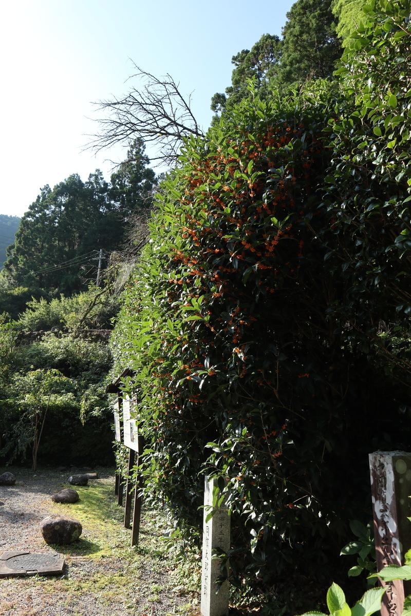 f:id:nshintaro:20201002160623j:plain