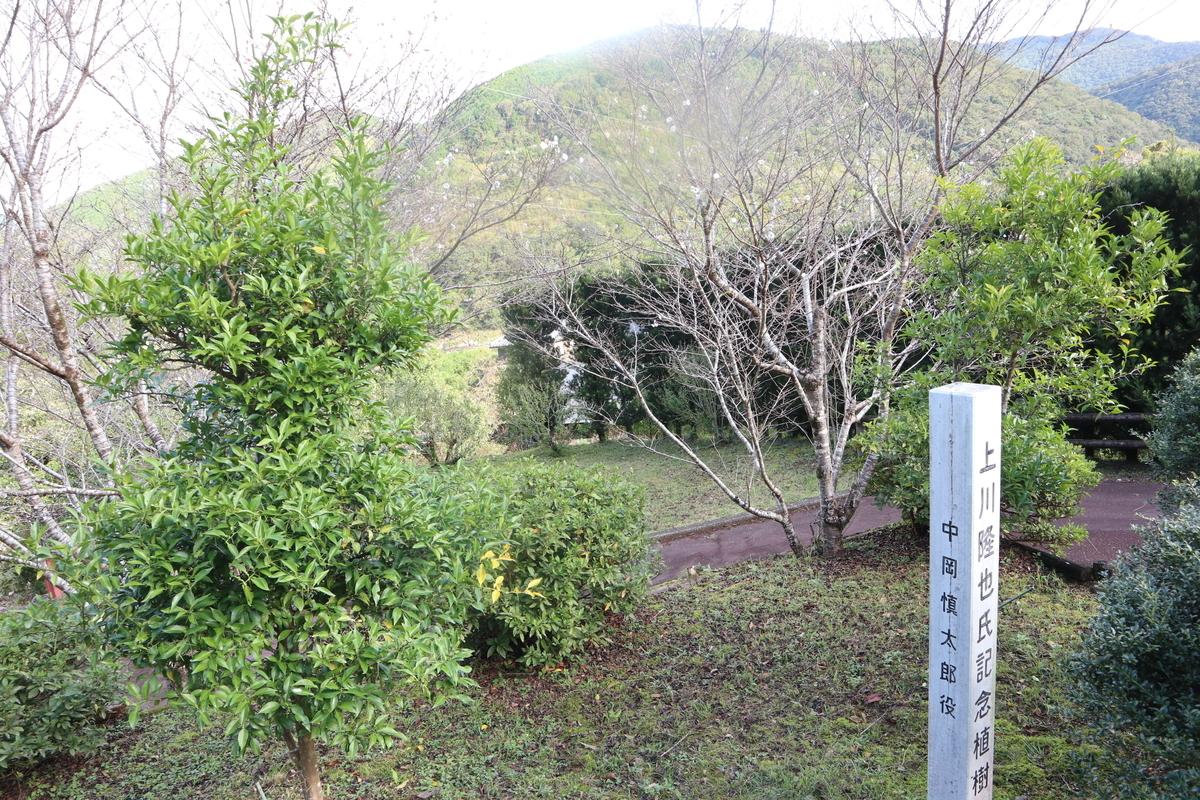 f:id:nshintaro:20201019182726j:plain