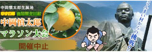 f:id:nshintaro:20201210205939p:plain