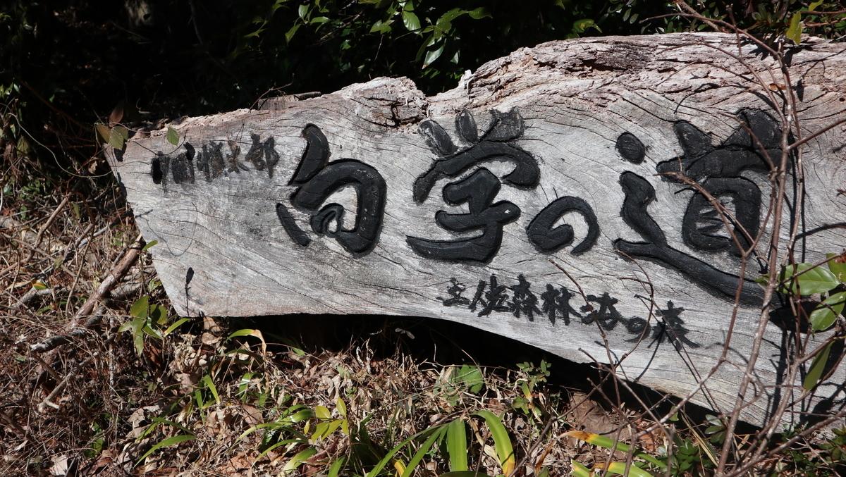 f:id:nshintaro:20210205181159j:plain