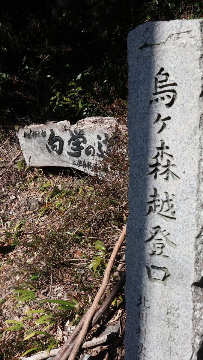 f:id:nshintaro:20210205181205j:plain
