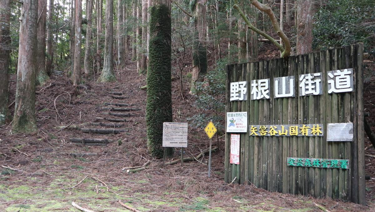 f:id:nshintaro:20210211171520j:plain