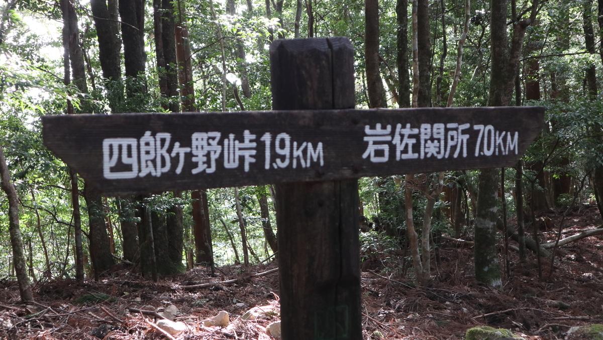 f:id:nshintaro:20210211171530j:plain