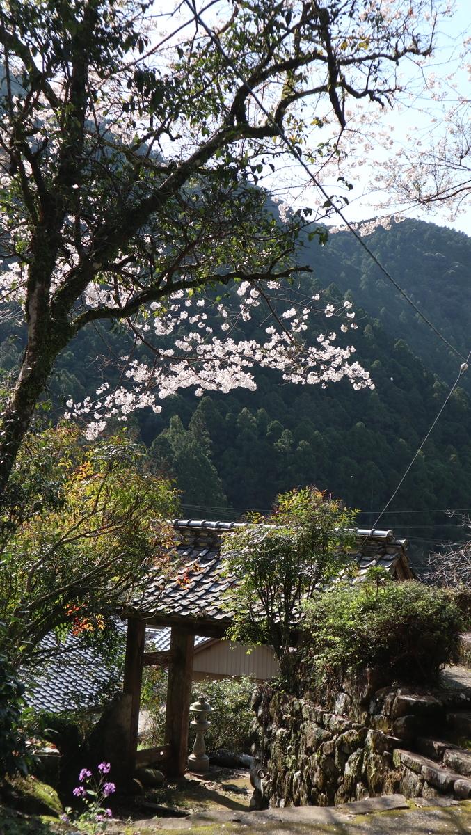 f:id:nshintaro:20210325175441j:plain
