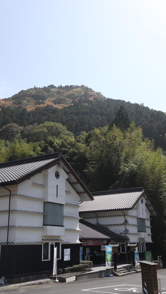 f:id:nshintaro:20210331174711j:plain