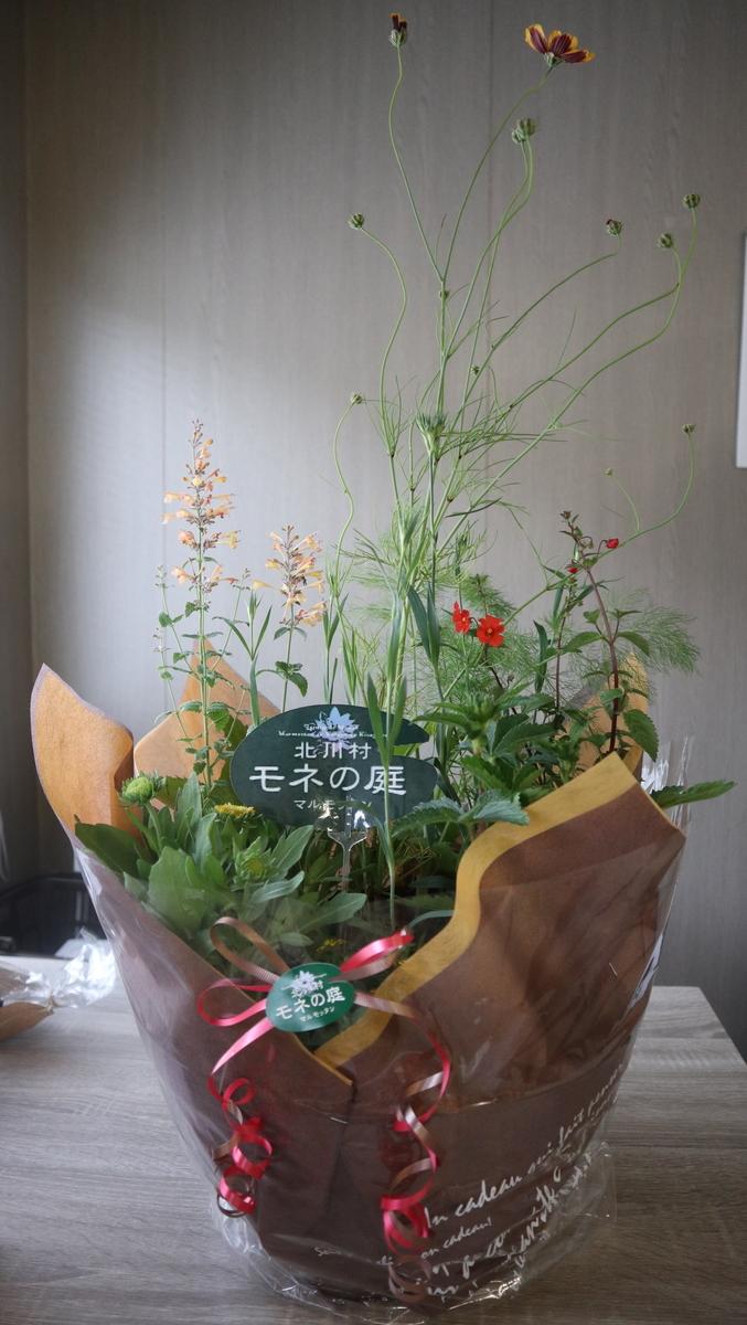 f:id:nshintaro:20210508183356j:plain