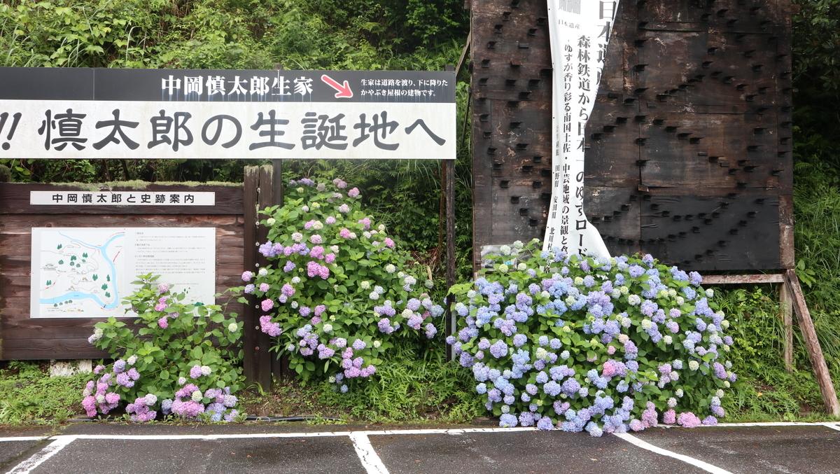 f:id:nshintaro:20210528191029j:plain